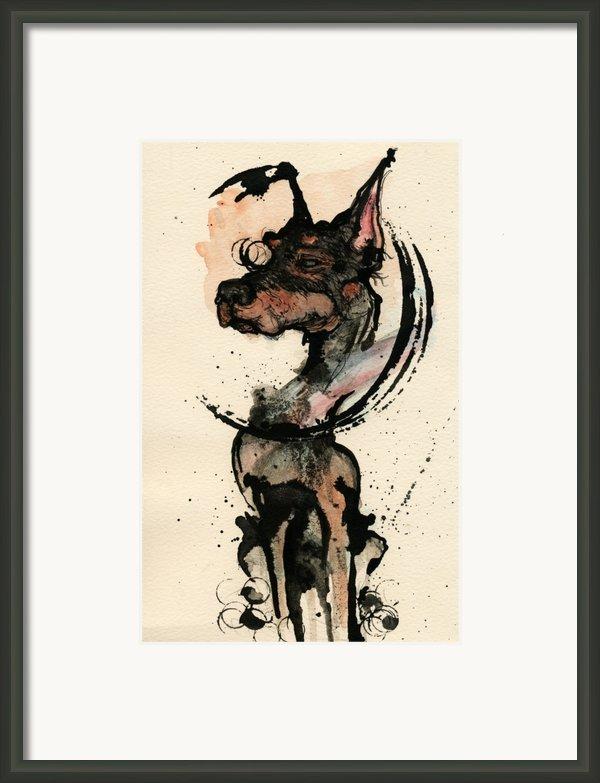 Doberman Framed Print By Mark M  Mellon