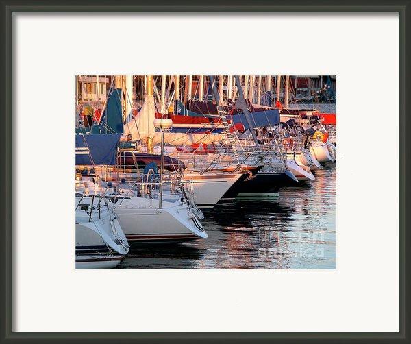 Docked Yatchs Framed Print By Carlos Caetano