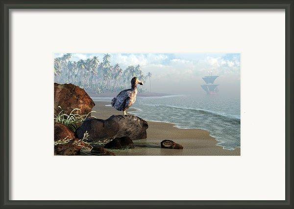 Dodo Afternoon Framed Print By Daniel Eskridge