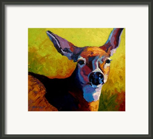 Doe Portrait V Framed Print By Marion Rose