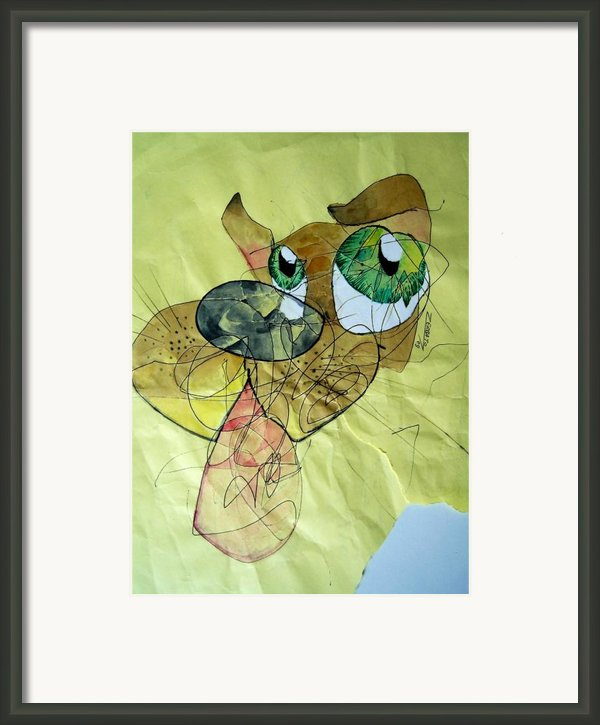 Dog Framed Print By Paulo Zerbato