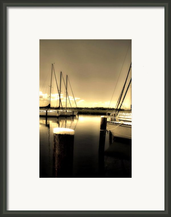 Dog River Marina Framed Print By Gulf Island Photography And Images