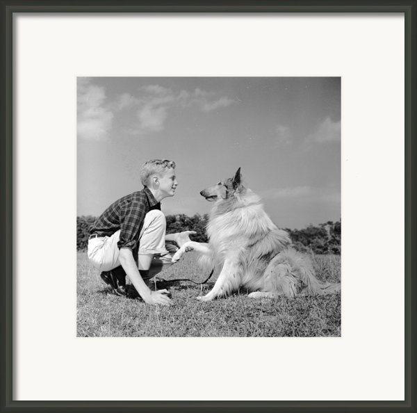 Dog Training Framed Print By Three Lions