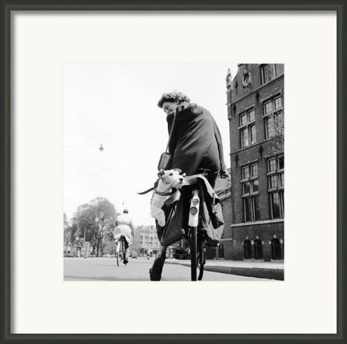 Doggy Bag Framed Print By Harry Kerr