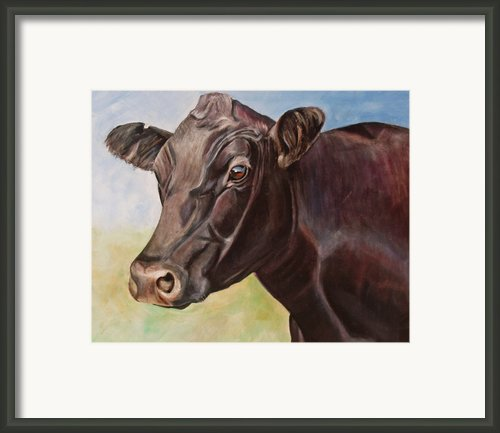 Dolly The Angus Cow Framed Print By Toni Grote