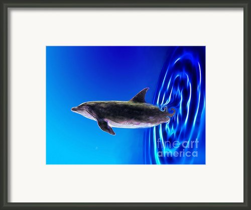 Dolphin Zoom Framed Print By Methune Hively