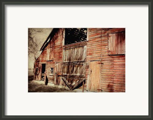 Doors Open Framed Print By Julie Hamilton