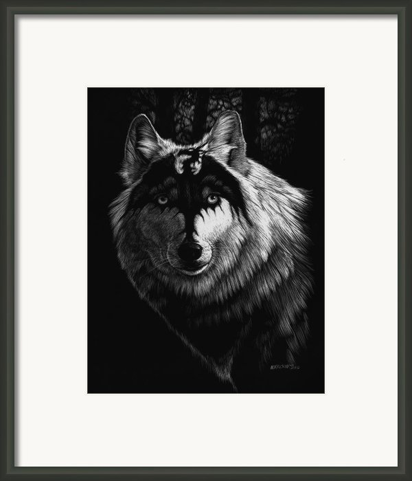 Dragon Wolf Framed Print By Stanley Morrison