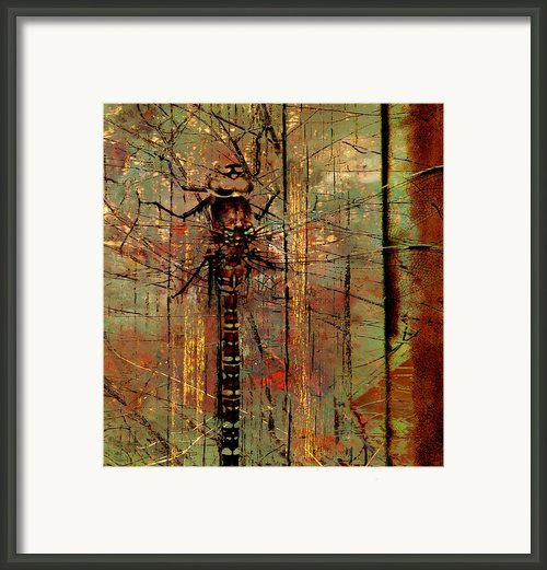 Dragons Wall  Framed Print By Jerry Cordeiro