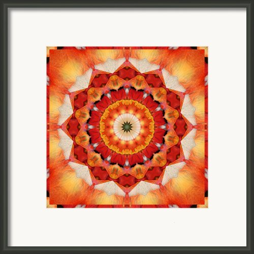 Dreaming Framed Print By Bell And Todd