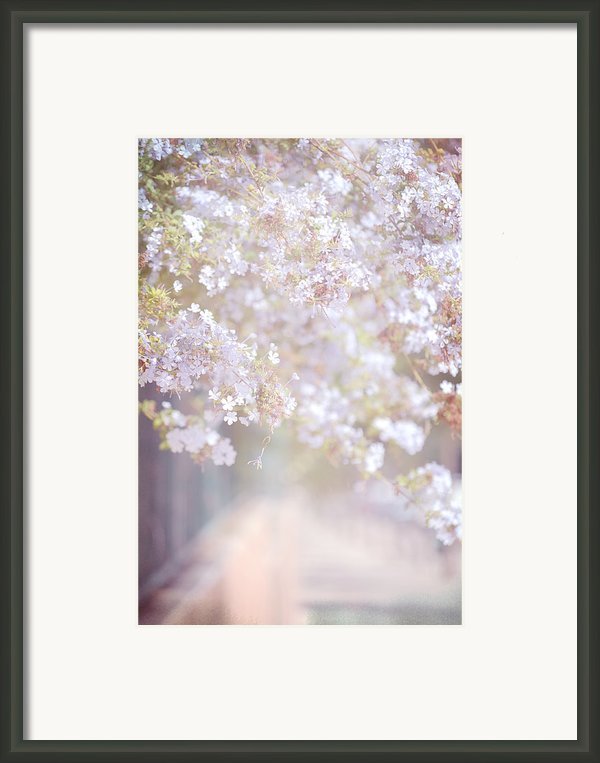 Dreaming Of Spring Framed Print By Jenny Rainbow