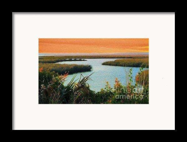Dreamsicle Sunset Framed Print By Julie Dant