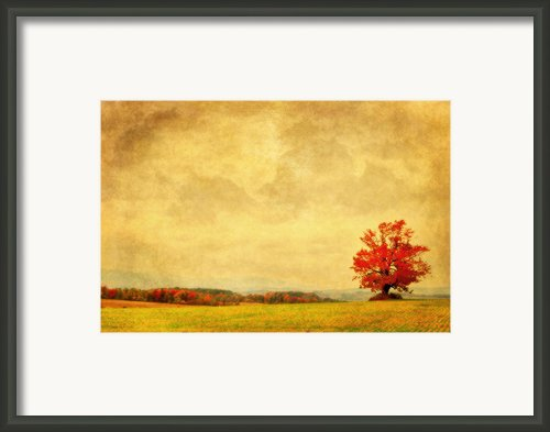 Dressed In Red Framed Print By Emily Stauring