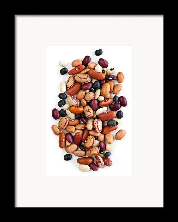 Dry Beans Framed Print By Elena Elisseeva