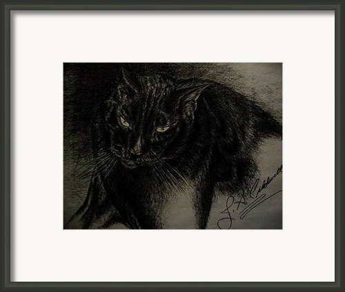 Dudley  Pencil Framed Print By Julie Ann Caldwell