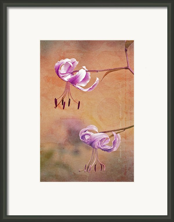 Duet 05c Framed Print By Aimelle