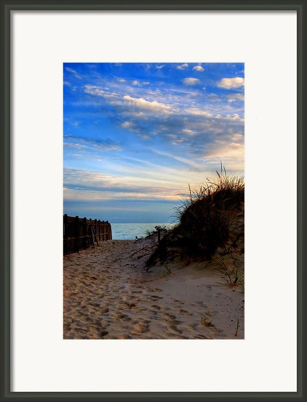 Dunes On The Cape Framed Print By Joann Vitali
