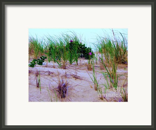 Dunes Framed Print By Susan Carella
