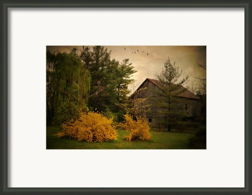 Early Spring Framed Print By Kathy Jennings