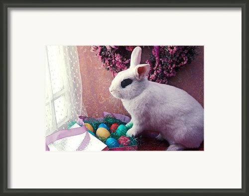 Easter Bunny Framed Print By Garry Gay