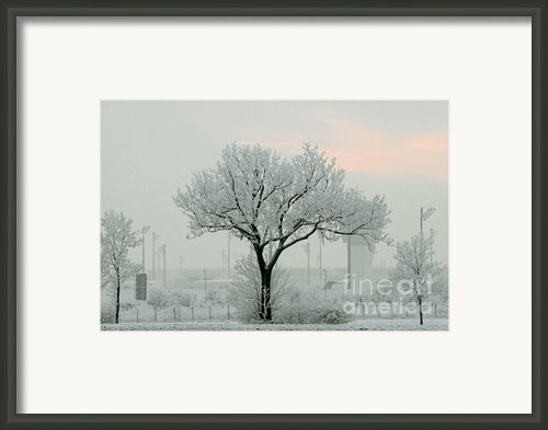 Eerie Days Framed Print By Christine Till