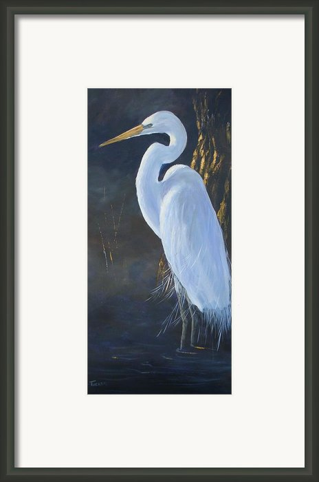 Egret Framed Print By Kathleen Tucker