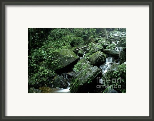 El Yunque National Forest Rocks And Waterfall Framed Print By Thomas R Fletcher