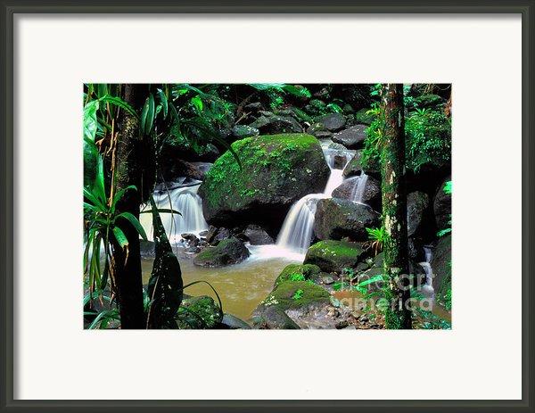 El Yunque National Forest Waterfall Framed Print By Thomas R Fletcher