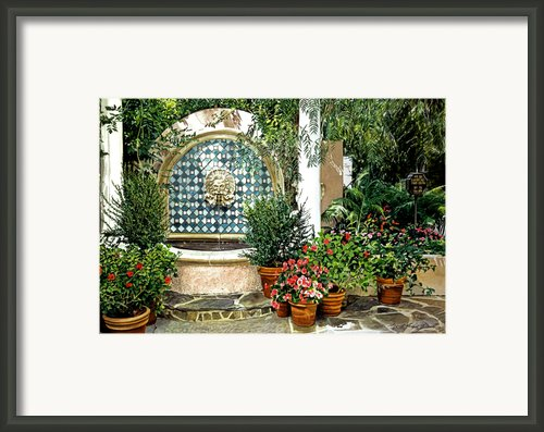 Elegant Afternoon Framed Print By David Lloyd Glover