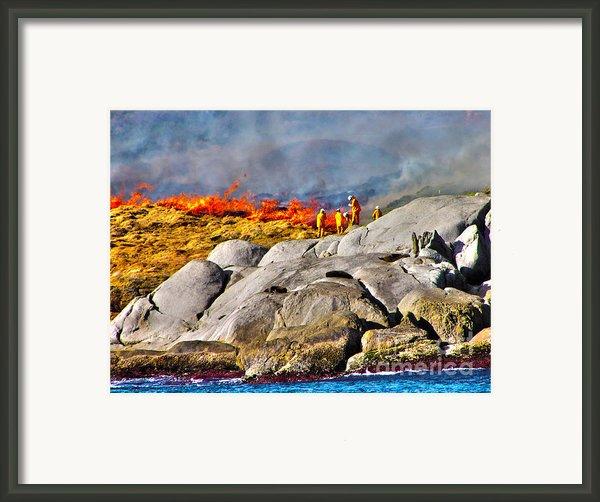 Elements Framed Print By Joanne Kocwin
