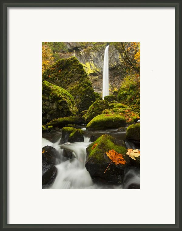 Elowah Autumn Framed Print By Mike  Dawson