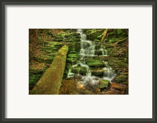 Emerald Dreams Framed Print By Evelina Kremsdorf