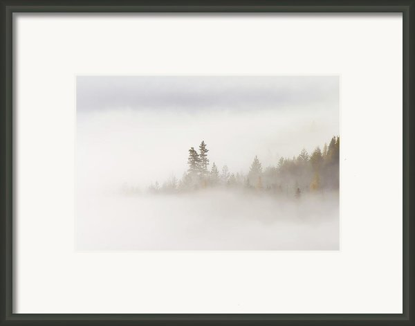 Emergence Framed Print By Mike  Dawson