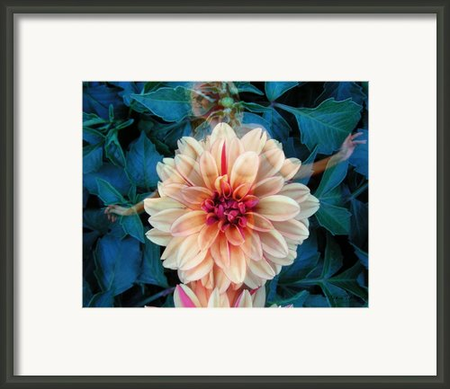 Emergence Framed Print By Torie Tiffany