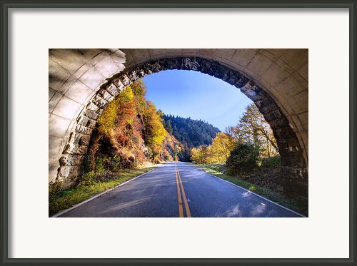 Emerging Framed Print By Rob Travis