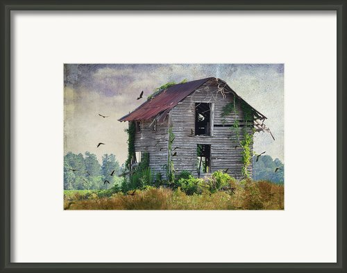 Empty Spaces Framed Print By Jan Amiss Photography