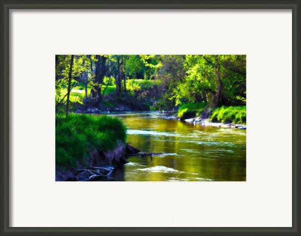 Enchanted River Framed Print By Rebecca Frank