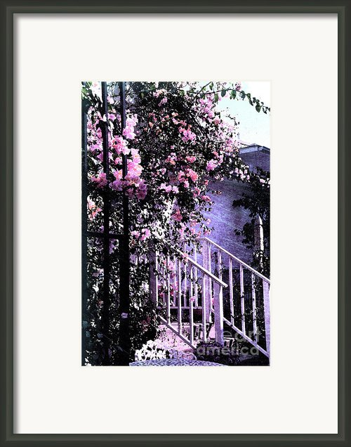 Endless Summer Framed Print By Susanne Van Hulst