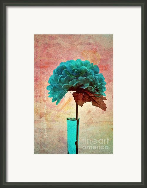 Estillo - S04b2t22 Framed Print By Variance Collections