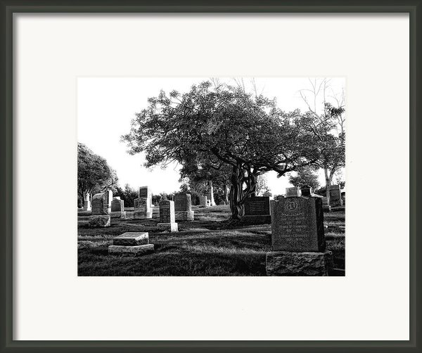 Etched In Stone Framed Print By Donna Blackhall
