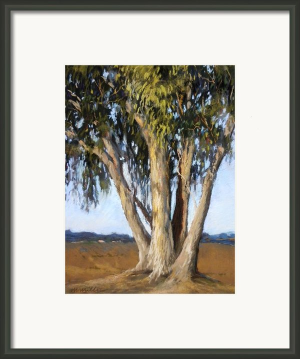 Eucs At Moss Landing Framed Print By Maralyn Miller