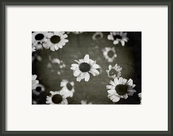 Even In Darker Days Framed Print By Laurie Search