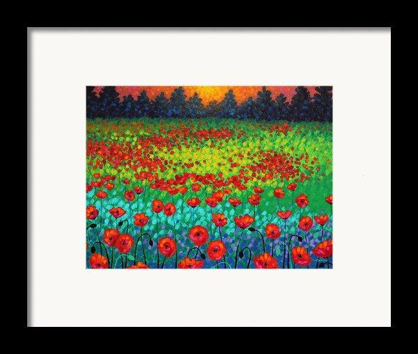 Evening Poppies Framed Print By John  Nolan
