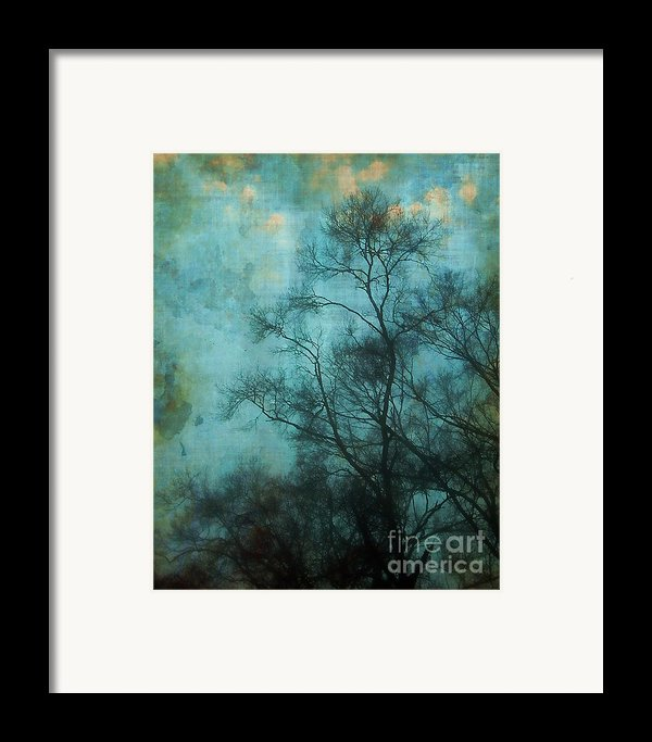 Evening Sky Framed Print By Judi Bagwell