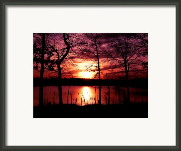 Evening Wine Framed Print By Karen M Scovill