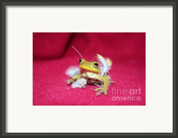 Ever Have One Of Those Days Framed Print By Lynda Dawson-youngclaus