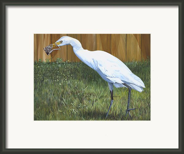 Eye To Eye Framed Print By Annajo Vahle