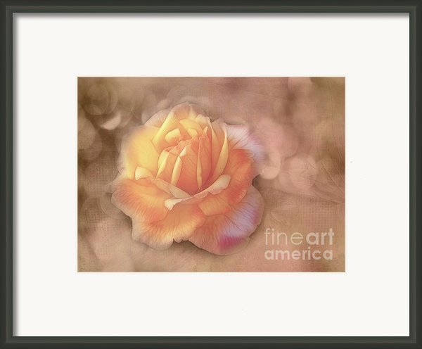 Faded Memories Framed Print By Judi Bagwell