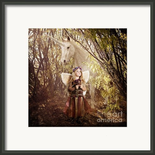 Fairy And Unicorn Framed Print By Cindy Singleton