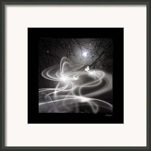 Fairy Fog Framed Print By Maggie  Smith